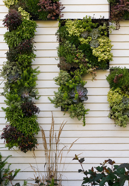 19 Effective Vertical Garden ideas