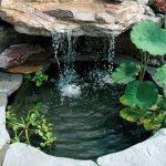 Beautiful Backyard Pond Ideas